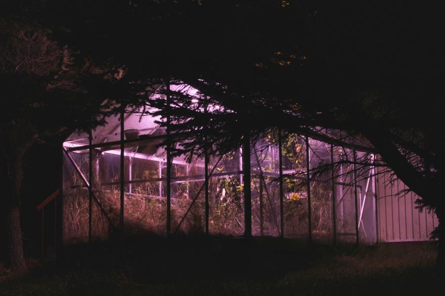 Greenhouse on Hrisey